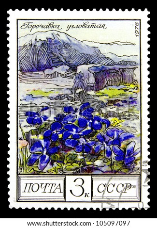 "USSR - CIRCA 1980: A stamp printed in USSR (Russia) shows Common Ash with the inscription ""Fraxinus excelsior"", from the series ""Protected trees and shrubs"", circa 1980"