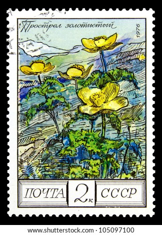"""USSR - CIRCA 1980: A stamp printed in USSR (Russia) shows Common Ash with the inscription """"Fraxinus excelsior"""", from the series """"Protected trees and shrubs"""", circa 1980"""