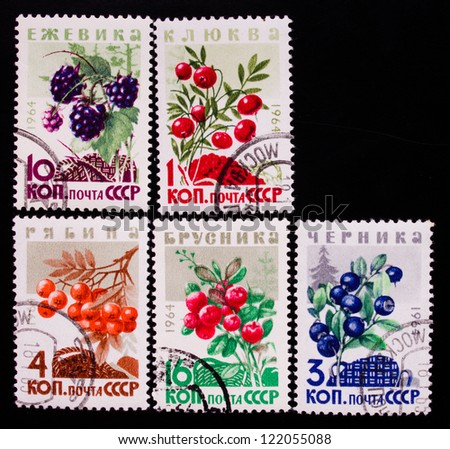 USSR- CIRCA 1961-1964: A stamp printed in USSR shows berries of different kinds, circa 1961-1964.
