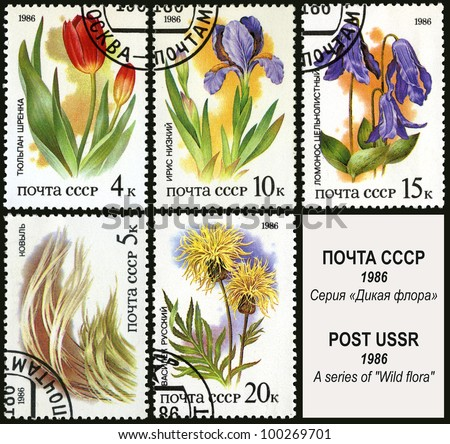 USSR - CIRCA 1986: A stamp printed in USSR, shows feather grass, tulip, iris, knapweed, clematis, circa 1986.