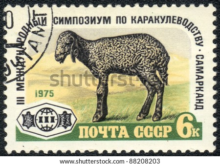 USSR - CIRCA 1975: A stamp printed in USSR  shows  III International Symposium on Karakul, circa 1975