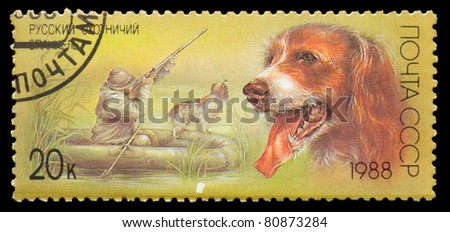USSR - CIRCA 1988: A stamp printed in USSR, shows Russian spaniel, duck hunt, series Hunting dogs, circa 1988