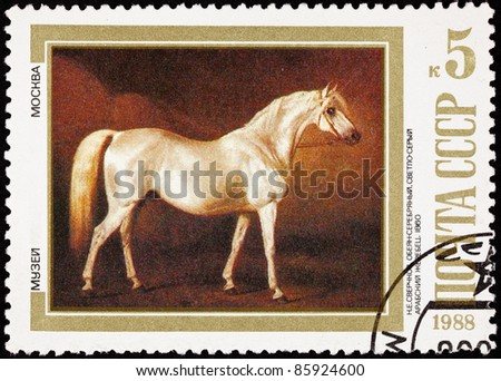 "USSR - CIRCA 1988: A stamp printed in USSR shows the painting ""Light Gray Arabian Stallion"" by Nikolai Sverchkov, circa 1988."