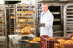 Usual work of baker in a bakery. High quality photo