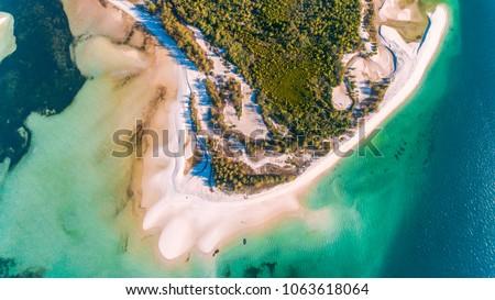utende beach area, mafia island #1063618064