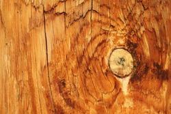 Utility pole backgound wood texture.