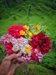 uttarakhand,india-2 june 2020:flower basket in hand.this is a picture of a flower basket with different flowers in natural background.colourful and bright flowers in one basket.flower wallpaper.