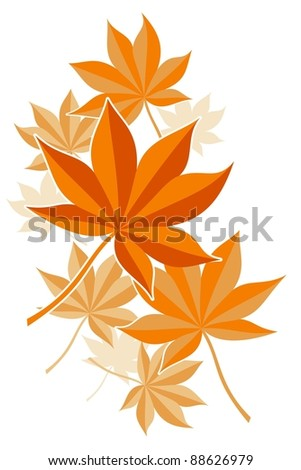 utumn maple leaves in orange color