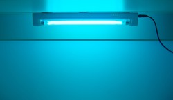 UV lamp sterilization of air and surfaces. Ultraviolet light from the lamp in laboratory. Coronavirus epidemic prevention concept. Copy space