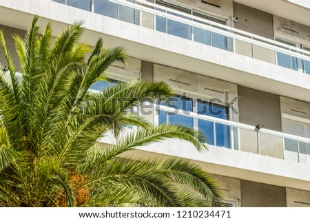 vacation and rest holidays concept of hotel apartment facade and palm green branches and leaves near building