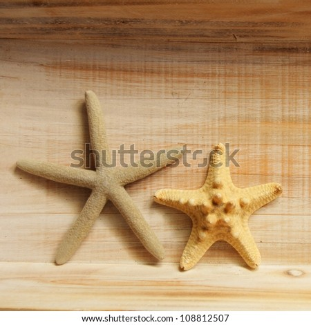 vacation concept with star fish or shellfish and copyspace on wood texture