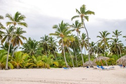 Vacation in tropical countries. Beach chairs, umbrella and palms on the beach. Punta Cana, Dominican.