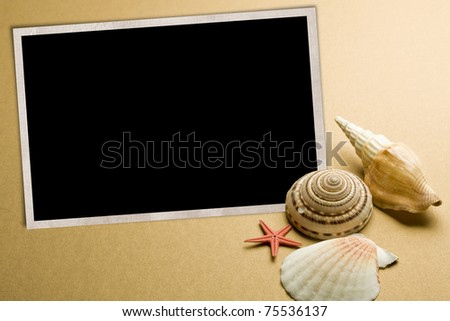 Vacation memories from beach, seashell and starfish, with blank photo frame - stock photo