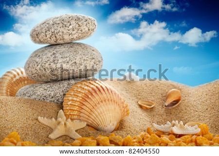 Vacation - Summer beach; stones and shells