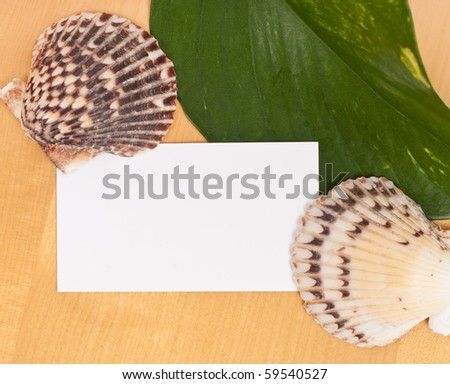 Vacation Themed Blank Business Card - stock photo