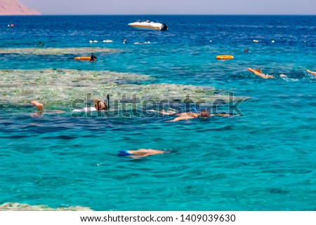Vacation tourist snorkel  swimming snorkeling in paradise clear water banner panorama. Swim girl snorkeler in crystalline waters and coral reefs. Turquoise ocean background. #1409039630
