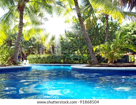 Vacations in the tropics by the pool. The sun's rays shine through the leaves of palm trees