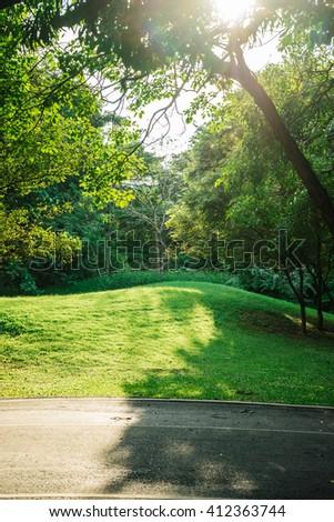 Vachirabenjatas Park at evening time in Bangkok, Thailand. - Shutterstock ID 412363744