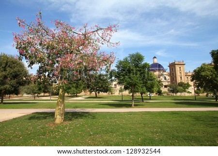 Valencia, Spain. Famous Turia gardens, park made in old riverbed. Blooming silk floss tree (Ceiba speciosa).