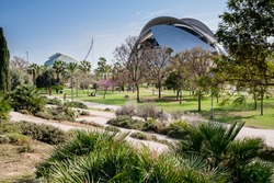 Valencia, Spain: partial view of the Jardí del Túria (Túria gardens), a public park with cycle ways, footpaths, sports facilities as well as the futuristic City of Arts and Sciences in the background
