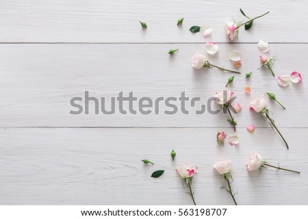Valentine background with scattered pink rose flowers and petals with copy space on white rustic wood. Happy lovers day mockup #563198707