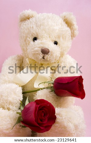 Valentine Concept - Bear with two red roses