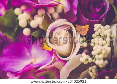 Valentine day background. Roses flower in vintage filter #534025921