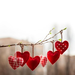 Valentine day love beautiful. Heart hanging on branch of tree on city street. Selective focus. Background blur bokeh