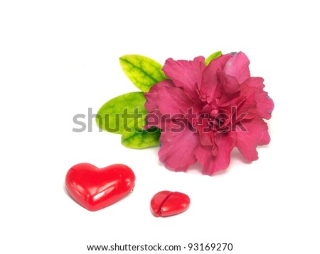 valentine day still life on a white background