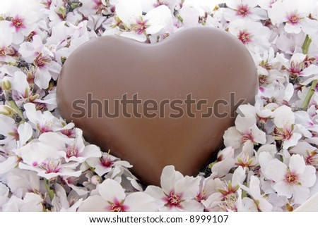Valentine Day: Sweet chocolate heart in a bed of flowers