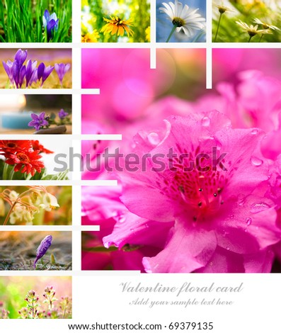 valentine flower collage with copyspace for text