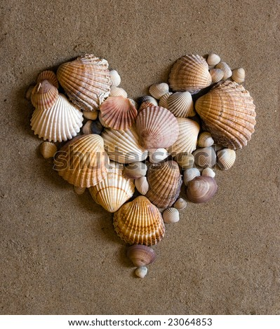 valentine heart made with shells - stock photo