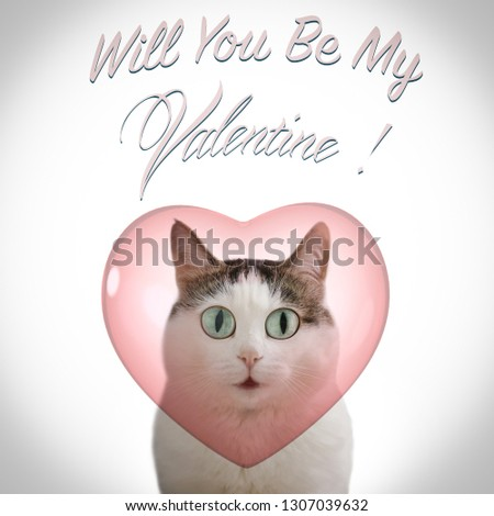 valentine's day card with funny cat and heart on white background with will you be my valentine inscription copy space