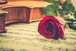 Valentine's day / eternal love or special occasion concept : Real fresh single red rose near stradivarius type violin on blurred musical notes in a romantic love song sheet music. Vintage color style