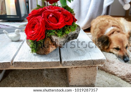 Valentine's Day floral arrangement with roses and mos inside a piece of bark. Rustic style interior. Stock fotó ©