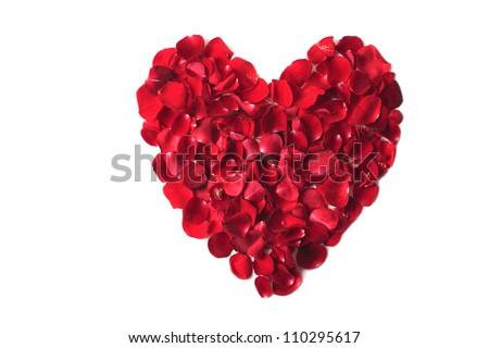 Valentine's day rose heart
