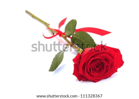 Valentine's day rose with red ribbon on white background
