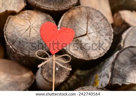 Valentines Day #242740564
