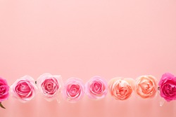 Valentines day background with beautiful pink rose flowers