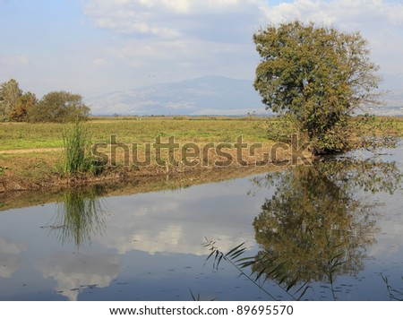 Valley meadow, channel and the tree growing on its coast and reflected in its water on the background of the mountains and cloudy sky (Hula valley. Israel)