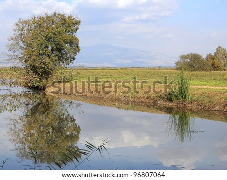 Valley meadow, creek and  tree reflected in the water (Hula valley. Israel) - stock photo
