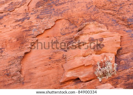 Valley of Fire State Park is the oldest state park in Nevada, USA.  It derives its name from red sandstone formations, formed from great shifting sand dunes during the age of dinosaur