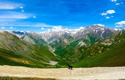 Valley of mountain hills panorama. Dog in mountains. Mountain range panorama. Mountain landscape