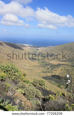 Valley on Lanzarote island ( Canary Islands, Spain )