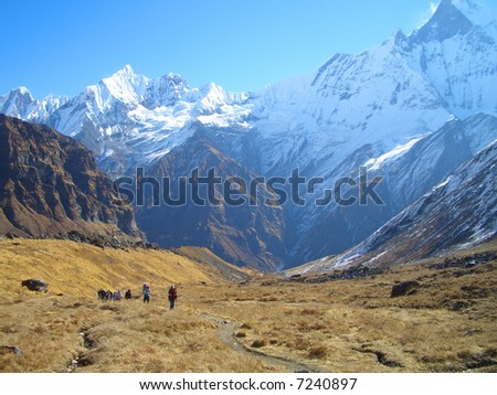 Valley under Mt Machupuchure, Annapurna