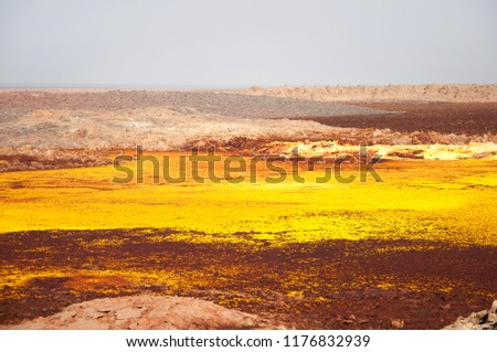 Valley with sulfur minerals formations of geothermal area in crater of Dallol Volcano, Danakil Depression, Northern Ethiopia #1176832939