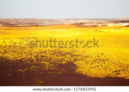 Valley with sulfur minerals formations of geothermal area in crater of Dallol Volcano, Danakil Depression, Northern Ethiopia #1176832942