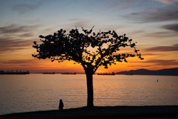 Vancouver BC Canada Sunset Time