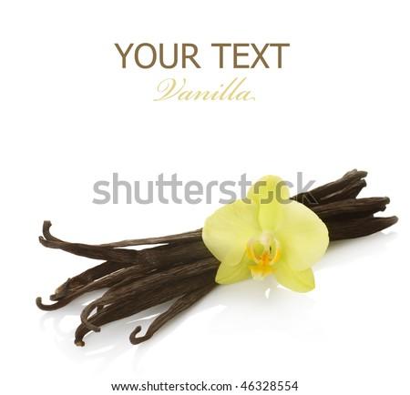 Vanilla - stock photo