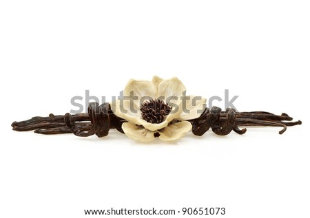 Vanilla bean pods with wood flower made from natural elements on white background